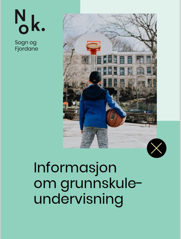 Informasjon undervisning